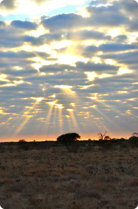 sunrise over southern africa